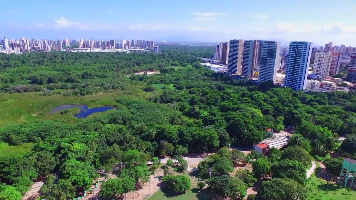 Cocó e Sabiaguaba: um olhar socioambiental sobre a criação do Parque -  Renato Roseno
